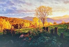 Marcia's Meadow (Vermont)