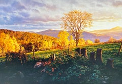 """Marcia's Meadow (Vermont),"" Photorealism, circle of Malcolm Morley, Chuck Close"