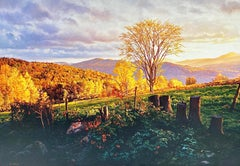"""""""Marcia's Meadow (Vermont),"""" Photorealism, circle of Malcolm Morley, Chuck Close"""