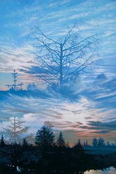 """Transparent Barricades: Variation II,"" Photorealism"