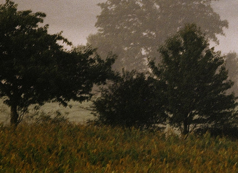 Mayenne -Signed limited edition fine art print, Color photo,Analog, France - Contemporary Photograph by Ian Sanderson