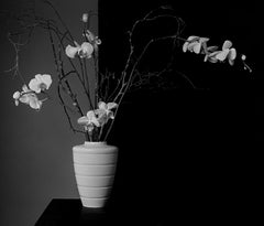 Orchids-Signed limited edition fine art print, black white nature photography