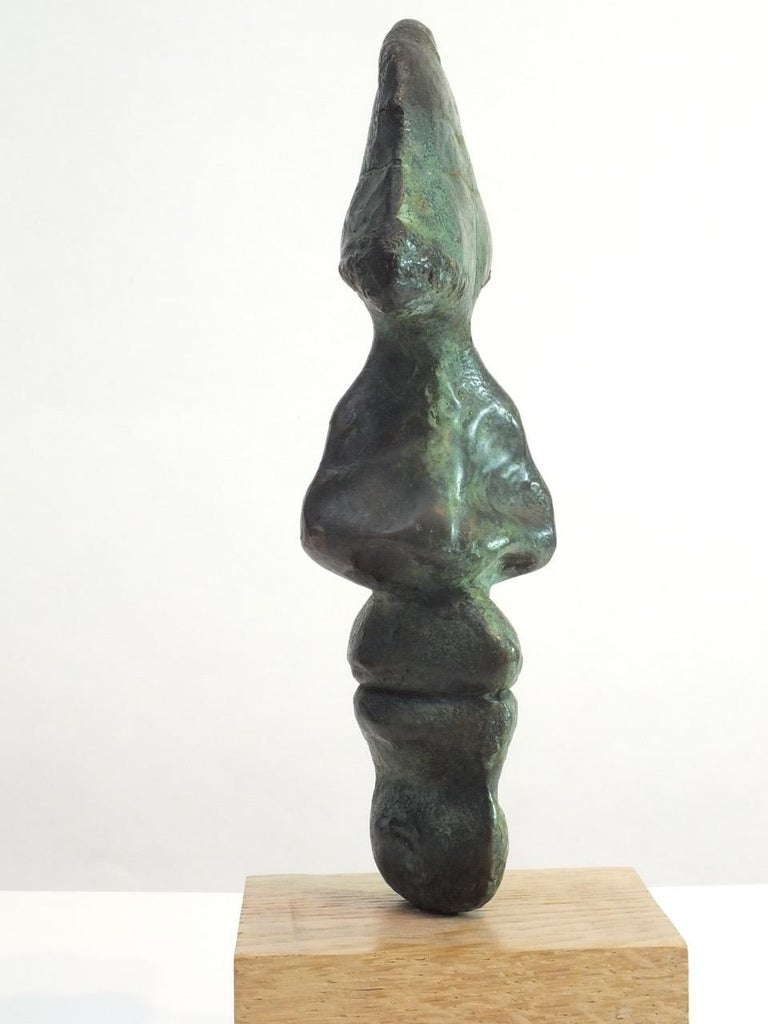 Tim Rawlin is a contemplative artist who explores the idea of self & identity. In this piece it's almost as if the soul has been laid bare allowing one to speculate about who we are. It's a reflective and tactile sculpture. This bronze is number 3