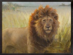 Lion in Botswana, Oil Painting, 40 x 30 Oil, Southeastern Wildlife Exhibition