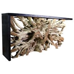 Illuminated Teak Wood Root Wall Console Table Framed with Black Wood