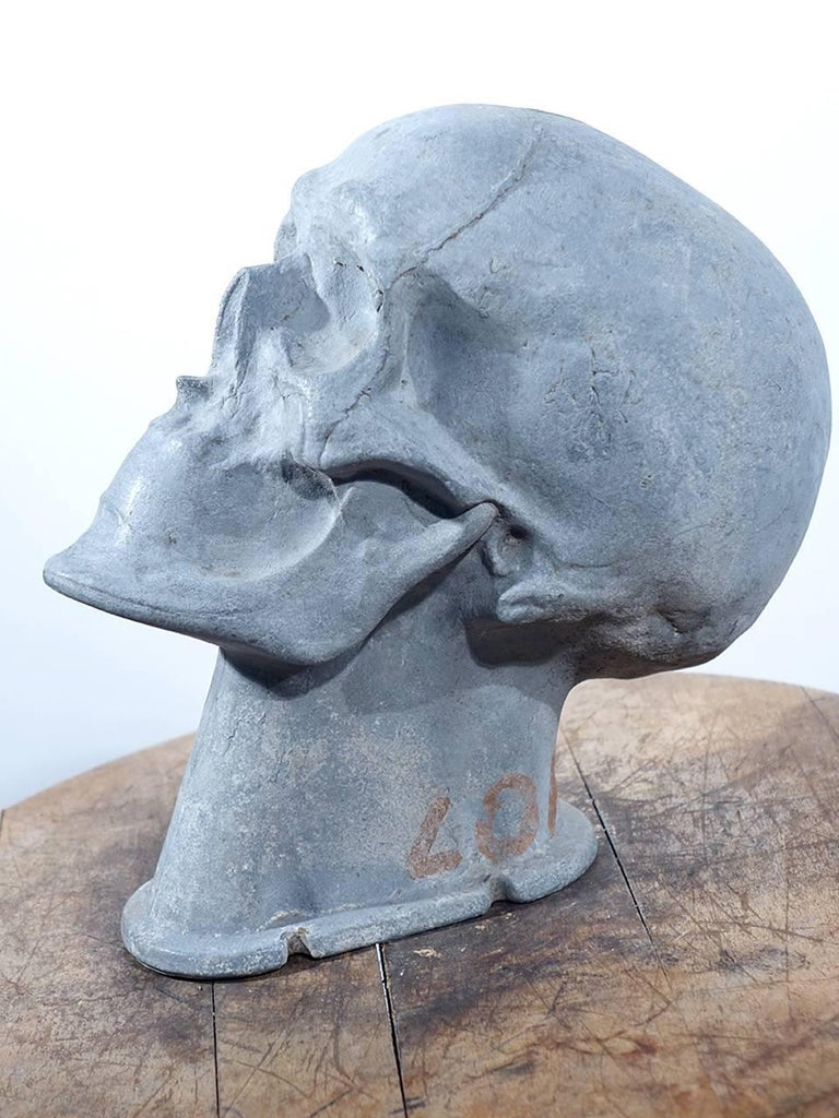 Industrial Important 1920s Medical Artist Model For Sale
