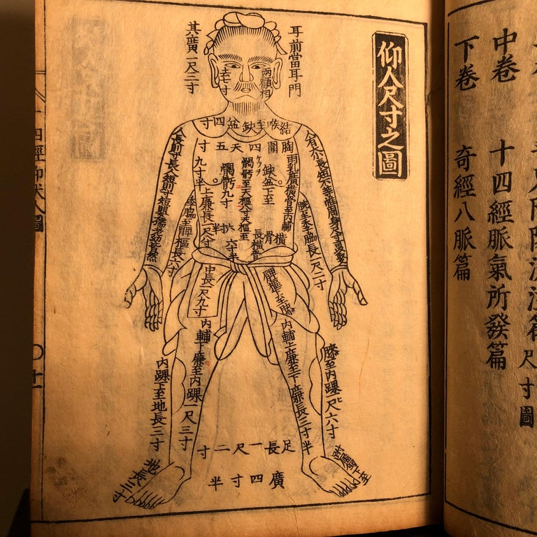 Important Acupuncture Japanese Antique Woodblock Guide Book, 19th Century Prints In Good Condition For Sale In Shelburne, VT