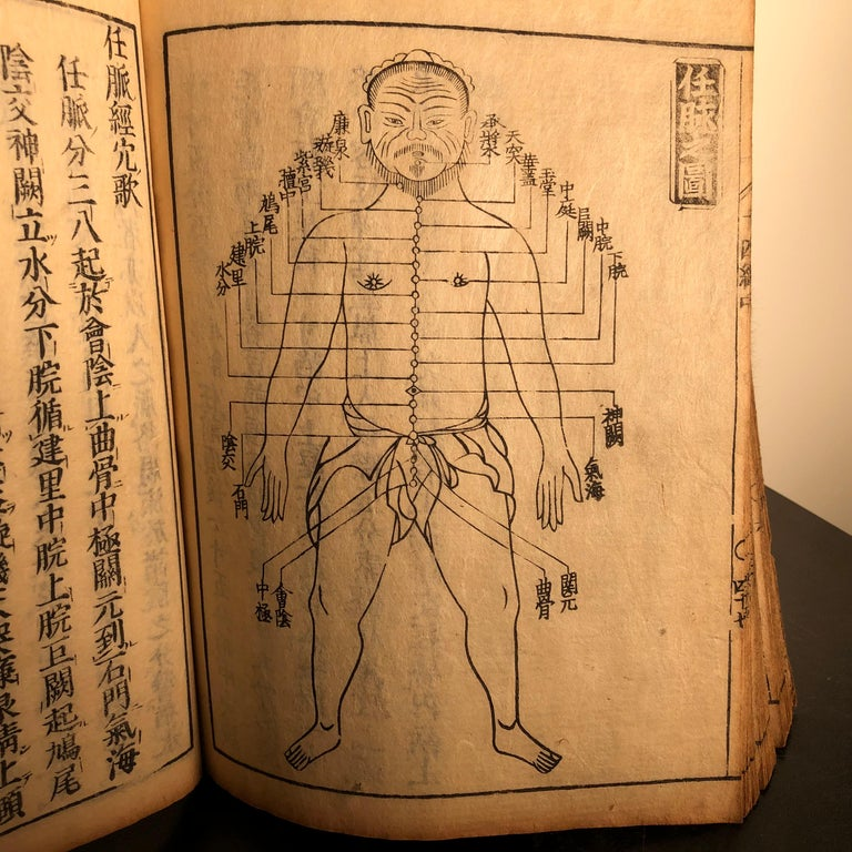 Important Acupuncture Japanese Antique Woodblock Guide Book, 19th Century Prints For Sale 1