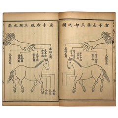 "Important Japan Antique ""Horse Veterinary"" Complete Woodblock 5 Book Set"