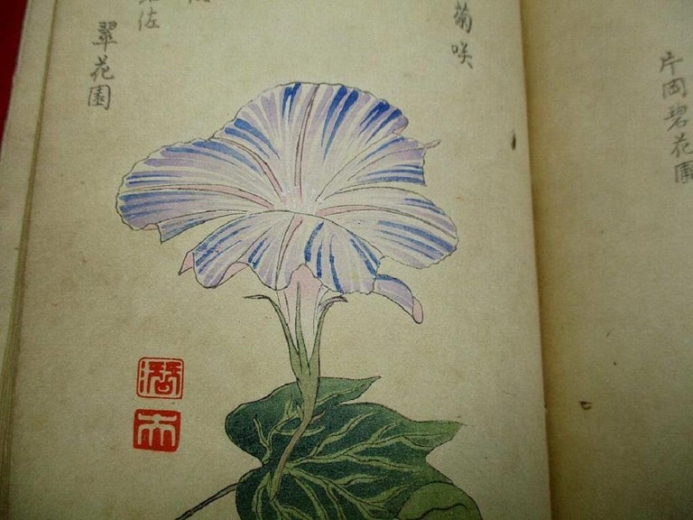 Important Japan Antique Woodblock Morning Glories 46 Vibrant Color Prints, 1903 For Sale 5