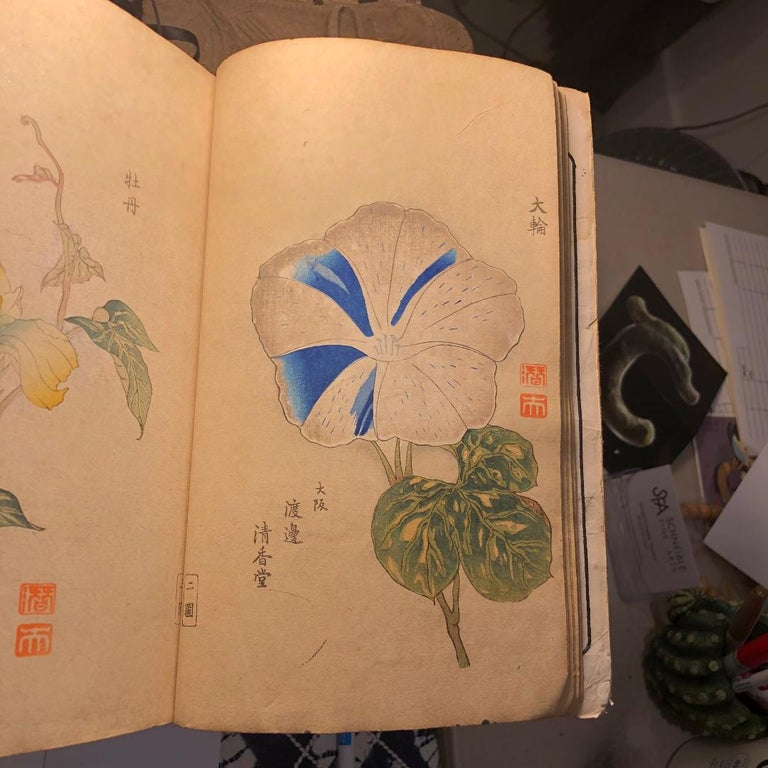 Meiji Important Japan Antique Woodblock Morning Glories 46 Vibrant Color Prints, 1903 For Sale
