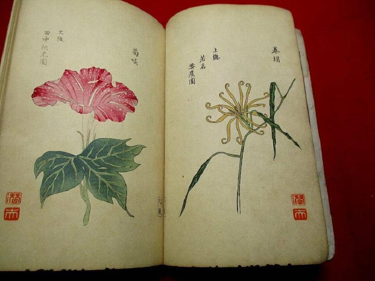 Japanese Important Japan Antique Woodblock Morning Glories 46 Vibrant Color Prints, 1903 For Sale