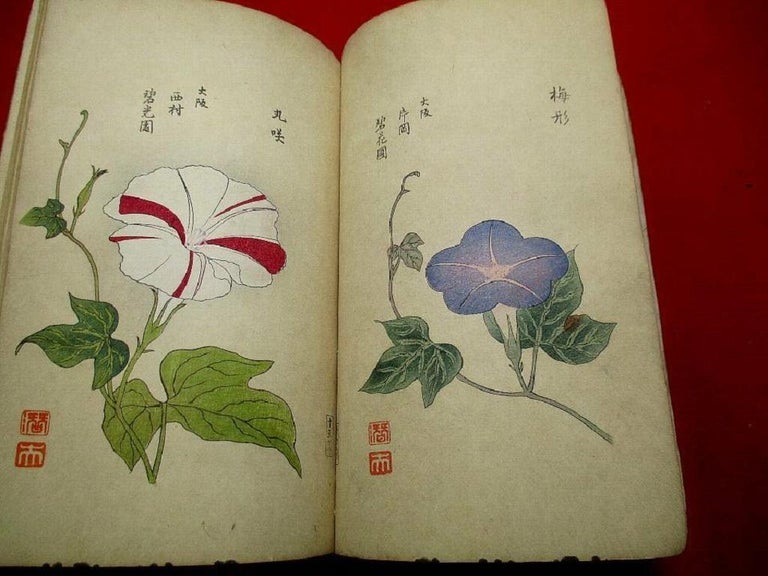 Hand-Crafted Important Japan Antique Woodblock Morning Glories 46 Vibrant Color Prints, 1903 For Sale