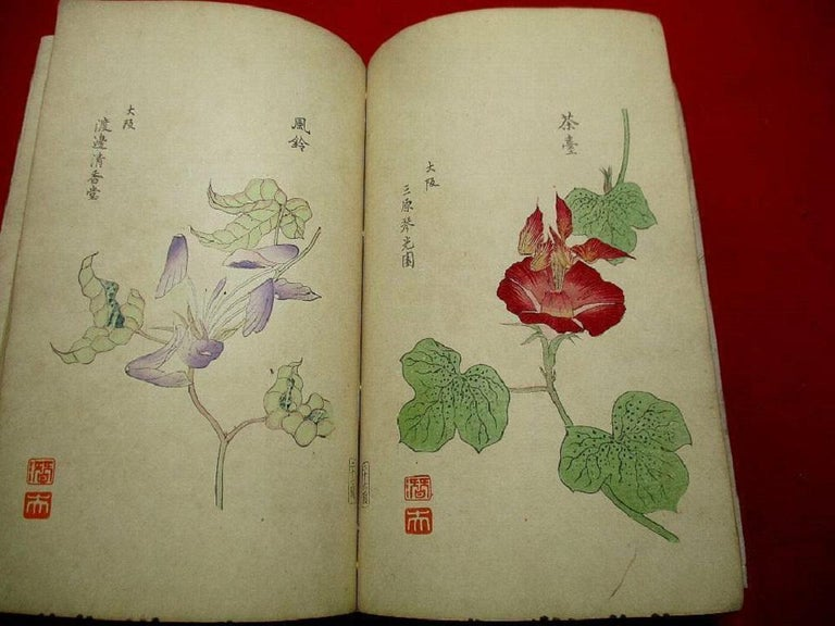 Paper Important Japan Antique Woodblock Morning Glories 46 Vibrant Color Prints, 1903 For Sale