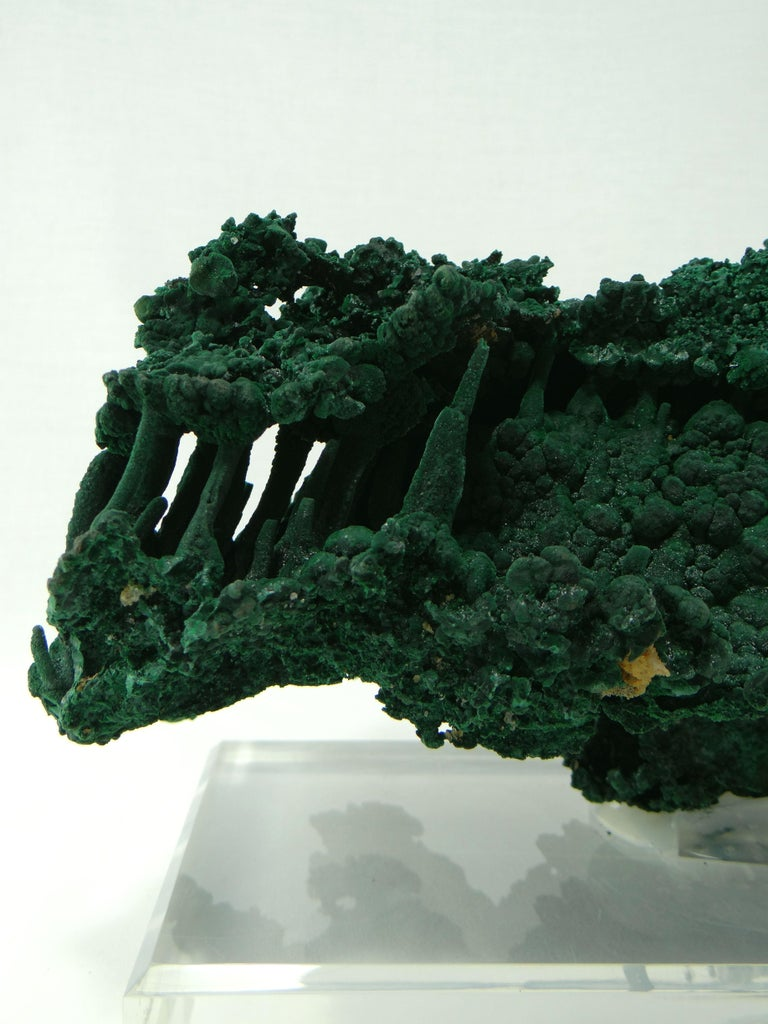 Important Malachite Stalactite from Congo, 1990 For Sale 5
