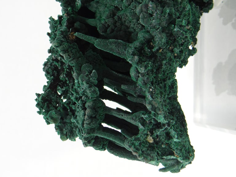 Important Malachite Stalactite from Congo, 1990 For Sale 6