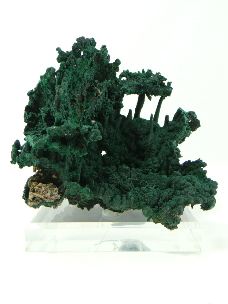 Important Malachite Stalactite from Congo, 1990 For Sale 8