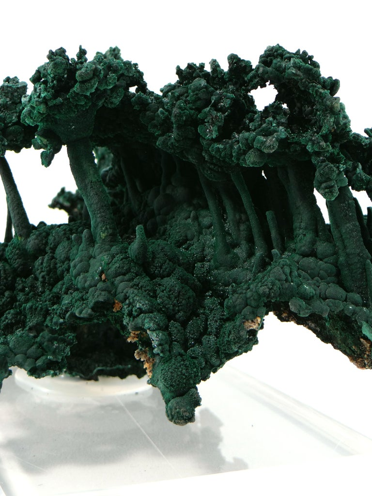 Important Malachite Stalactite from Congo, 1990 For Sale 9