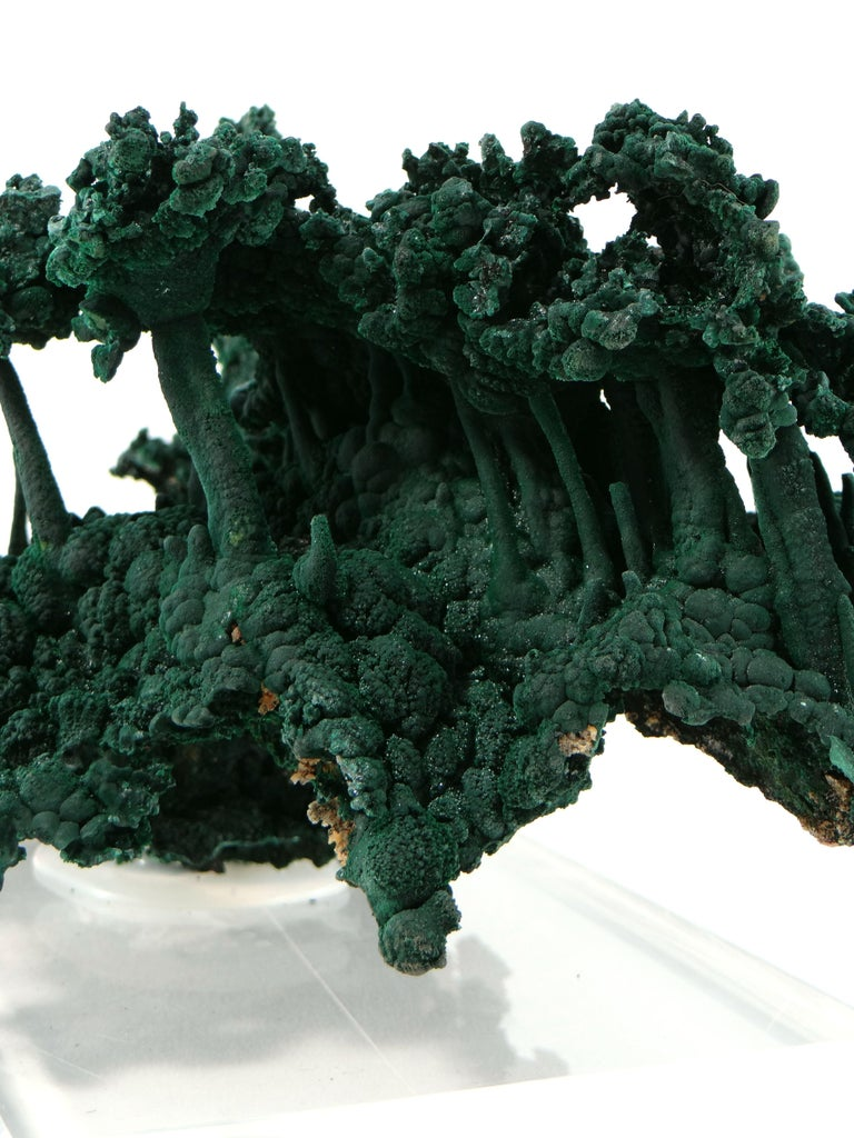 Important Malachite Stalactite from Congo, 1990 For Sale 10