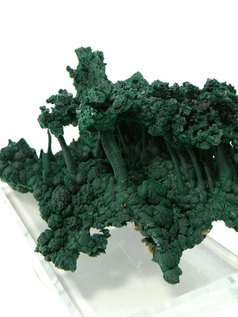 Important Malachite Stalactite from Congo, 1990 For Sale 11