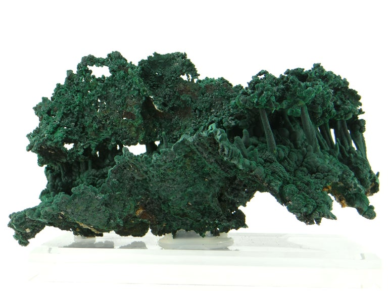 Very nice and important malachite stalactite Congo, mine Mindouli in the province of Katanga (Shaba), Democratic Republic of Congo. The concretions are superb. The surface is composed of a multitude of microscopic brilliant malachite crystals