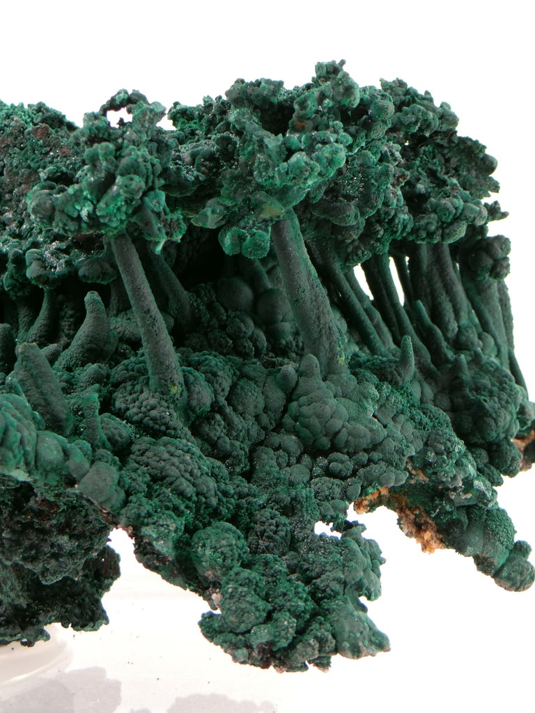 Congolese Important Malachite Stalactite from Congo, 1990 For Sale