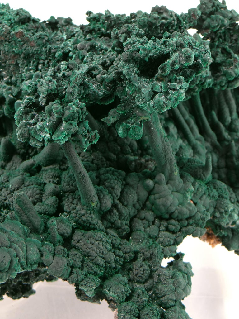 Important Malachite Stalactite from Congo, 1990 For Sale 2
