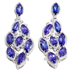 Important Tanzanite Diamond Earrings