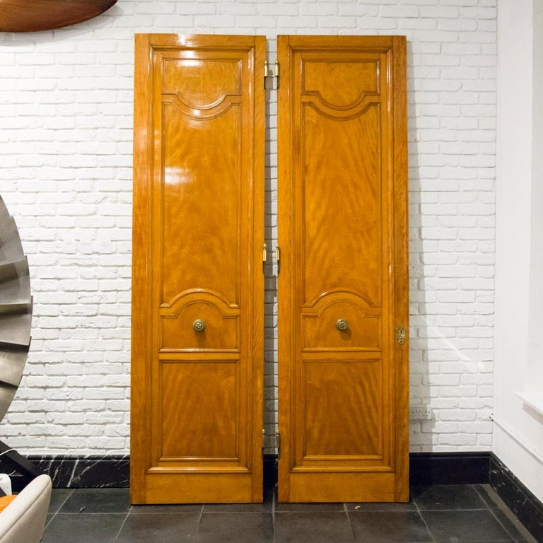 Imposing Pair of Carved Satin Wood Doors For Sale 3