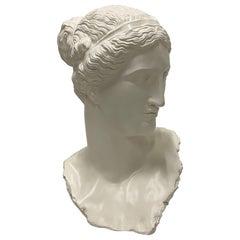 Impressive Large and Romantic Fiberglass Bust of Diana