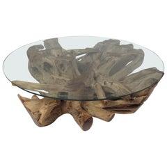 Impressive Mid-Century Modern Tree Root Coffee Table