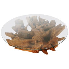 Impressive Midcentury Organic Modern Tree Root and Glass Round Cocktail Table