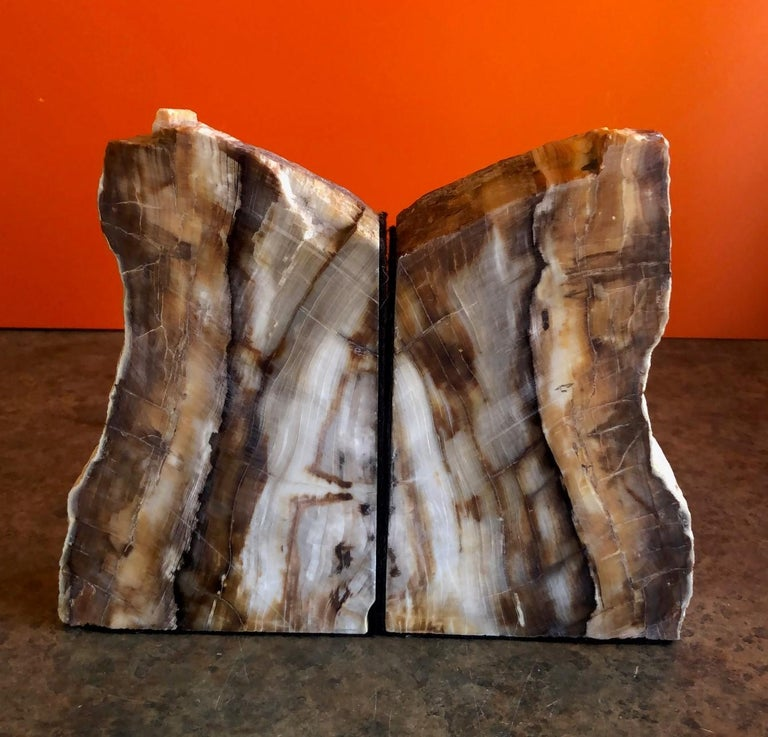 An impressive pair of fossilized bookends composed of petrified wood. Brightly colored cream, tan and brown tones with naturally formed patterns caused by fossilization over millions of years. Finished with a highly polished surface, the exterior