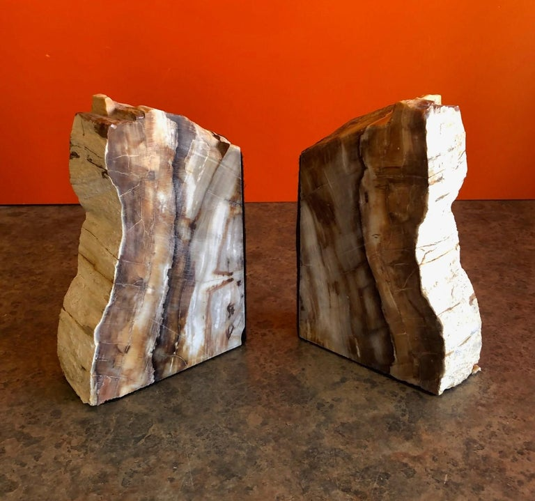 Organic Modern Impressive Pair of Petrified Wood Bookends For Sale