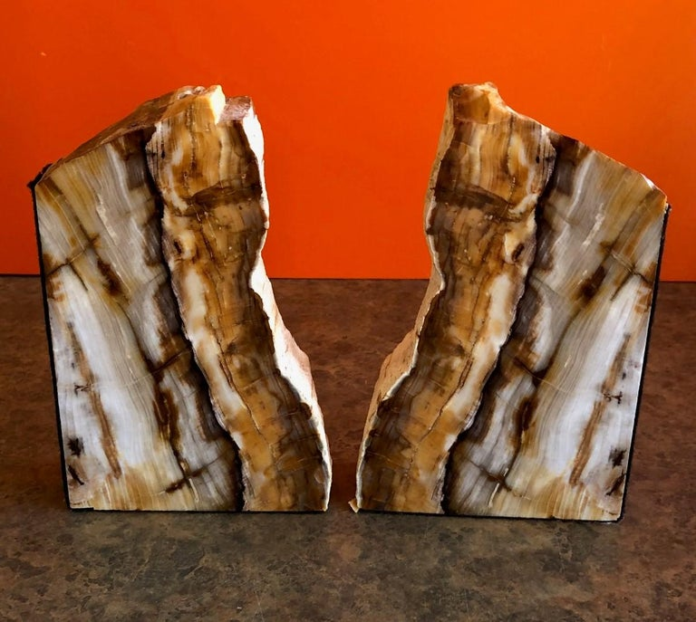 Unknown Impressive Pair of Petrified Wood Bookends For Sale