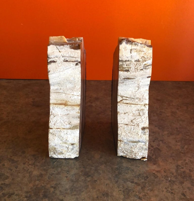 Impressive Pair of Petrified Wood Bookends In Good Condition For Sale In San Diego, CA