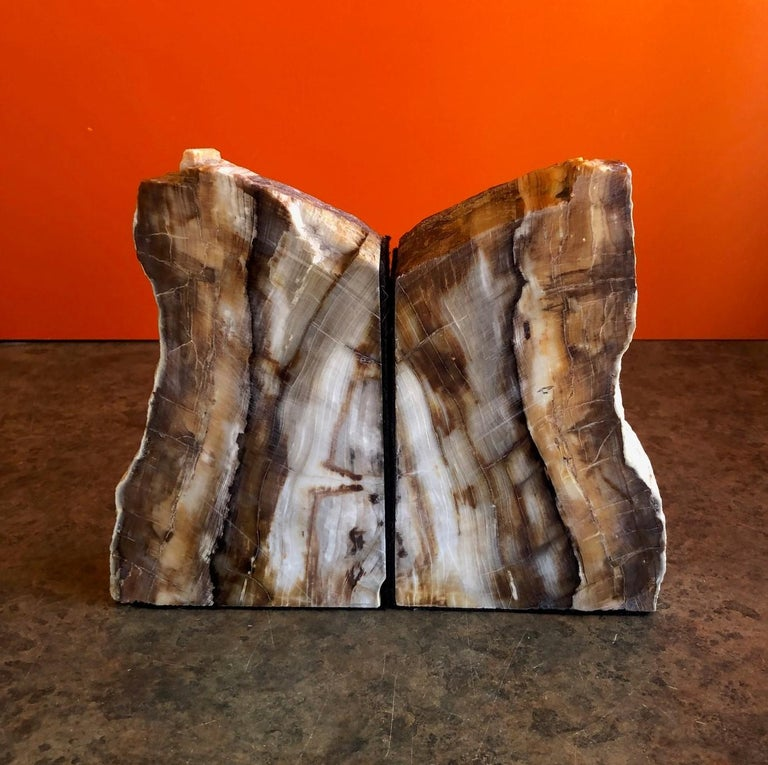 18th Century and Earlier Impressive Pair of Petrified Wood Bookends For Sale