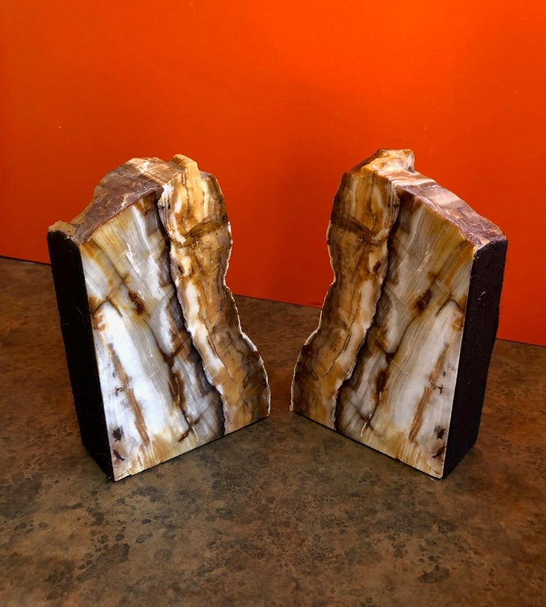 Impressive Pair of Petrified Wood Bookends For Sale 1