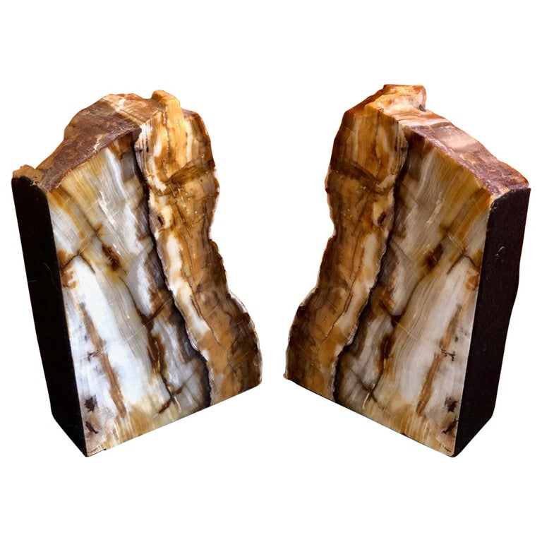 Impressive Pair of Petrified Wood Bookends For Sale