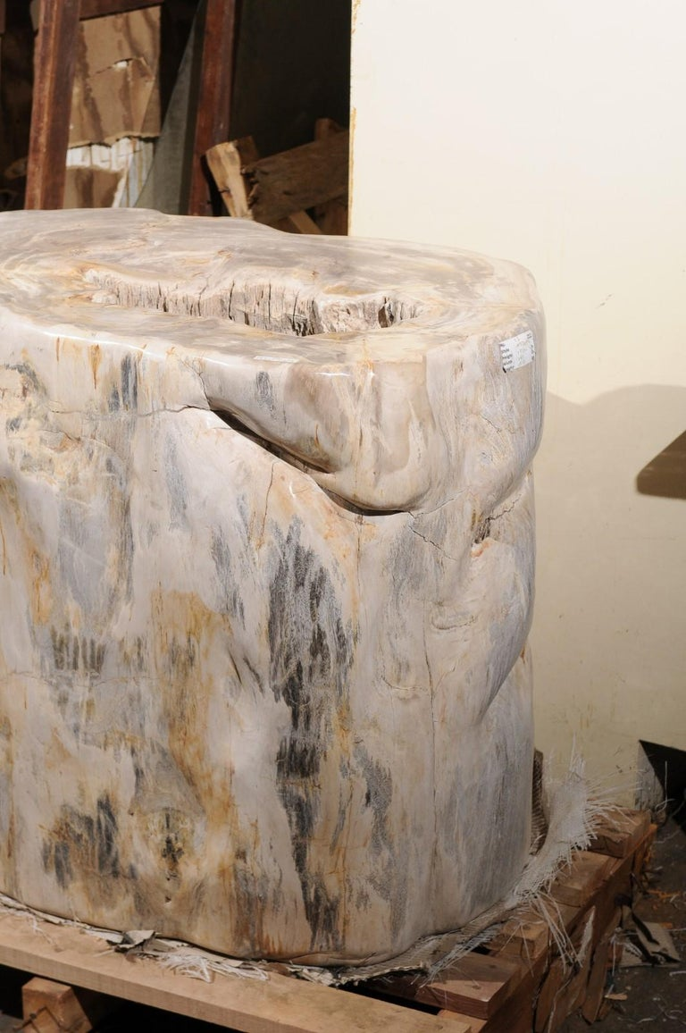 A Large-Sized Petrified Wood Pedestal Base, Beautiful Base for Glass Top Table! For Sale 5