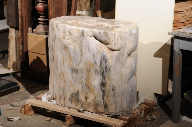 This large-sized petrified wood table base is indeed impressive! The petrified wood base has a smooth polished finish throughout, with the natural texture displayed down the open center. This piece has been fashioned from a single piece of petrified