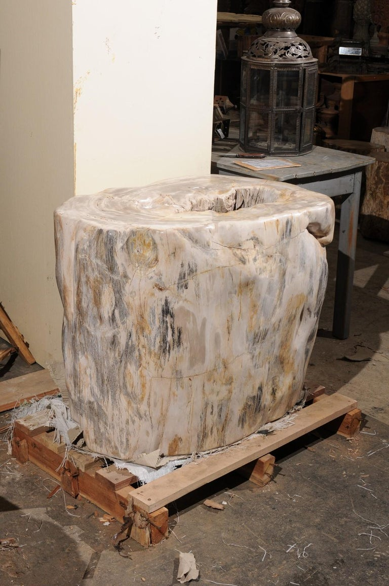 Polished A Large-Sized Petrified Wood Pedestal Base, Beautiful Base for Glass Top Table! For Sale