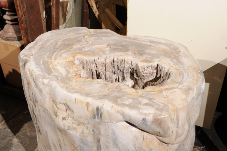 18th Century and Earlier A Large-Sized Petrified Wood Pedestal Base, Beautiful Base for Glass Top Table! For Sale