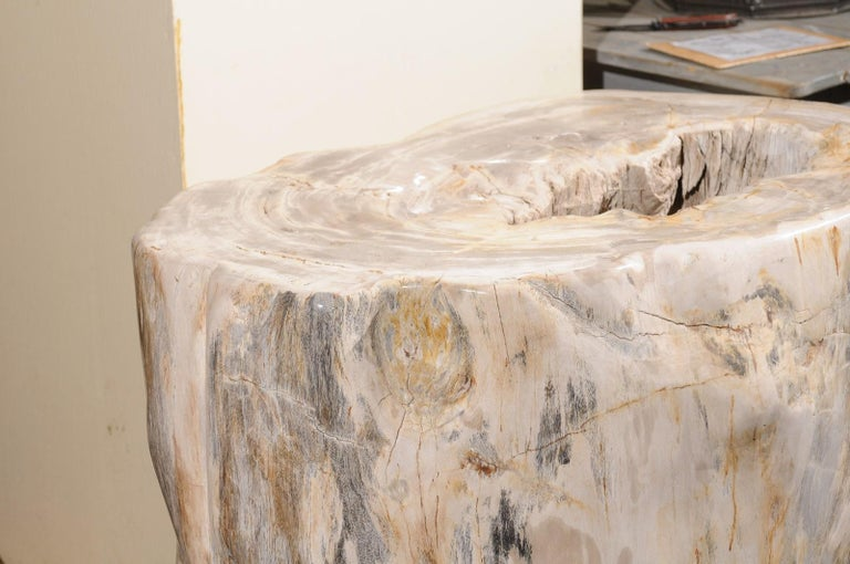 A Large-Sized Petrified Wood Pedestal Base, Beautiful Base for Glass Top Table! For Sale 1