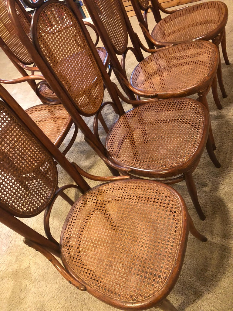 Late 19th Century Incredible Set of 6 French Bentwood Thonet Armchairs Dining Chairs No 17 For Sale