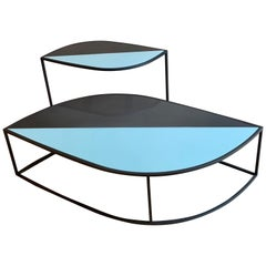 Indoor/Outdoor Roda Leaf Coffee Table Set Designed by Gordon Guillaumi