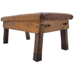 Industrial Leather Gymnastic Bench Seat