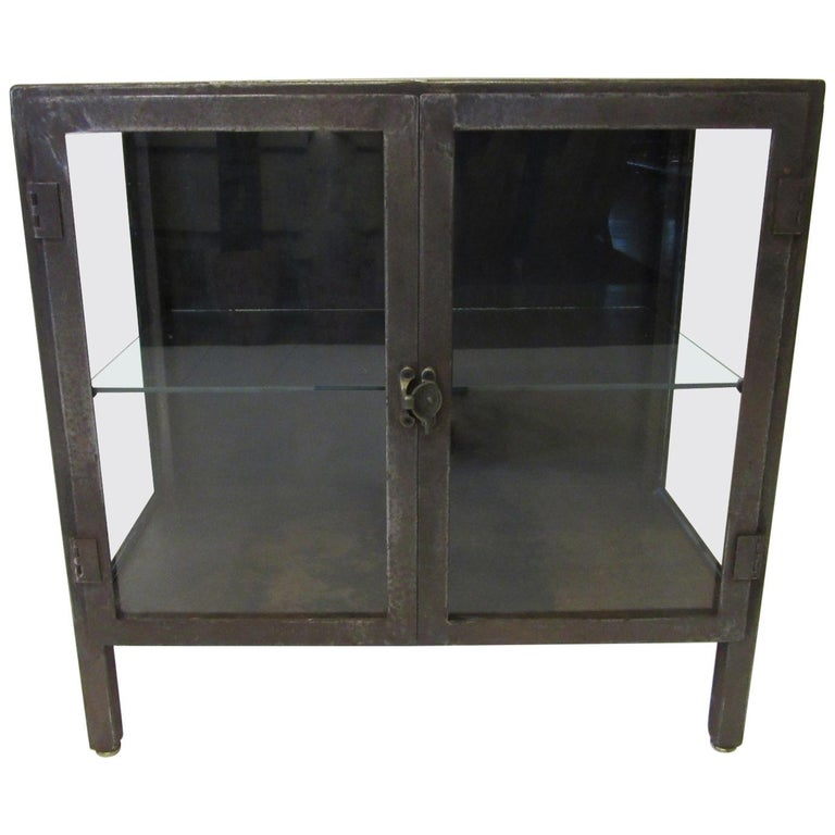 Industrial Steel and Glass Cabinet / Bookcase For Sale