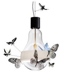 Ingo Maurer Flatterby Suspension Light