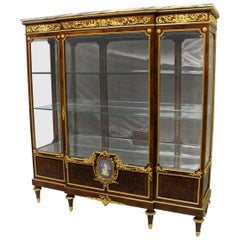 Interesting 19th Century Gilt Bronze and Wedgwood Mounted Parquetry Vitrine